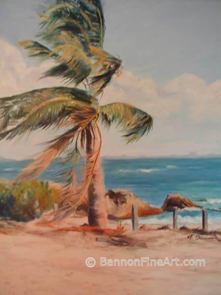 Sannibel Palm